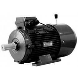 Mistervalve GPT IE3 electric motor 11.00 kW 460/796V, 460VDY