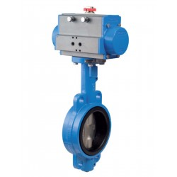 "Bonomi DAN500S SS butterfly valve with double acting actuator 2"" to 12"""